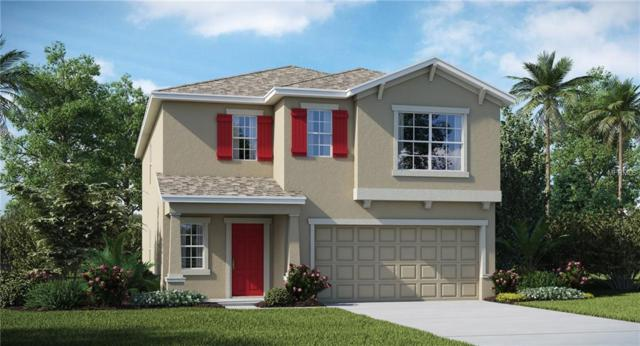 4256 Unbridled Song Drive, Ruskin, FL 33573 (MLS #T3178400) :: The Duncan Duo Team