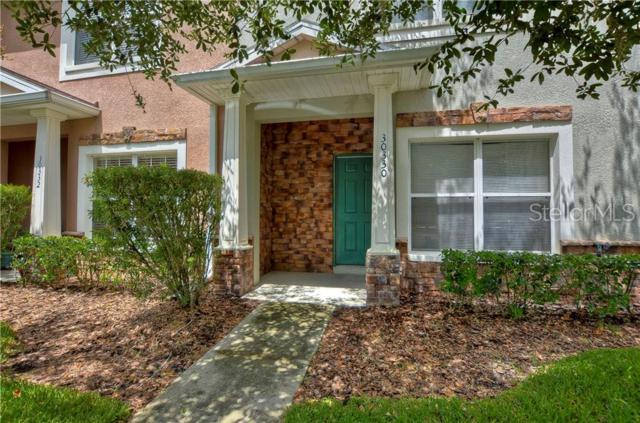 30330 Elderwood Drive, Wesley Chapel, FL 33543 (MLS #T3178405) :: Team Bohannon Keller Williams, Tampa Properties