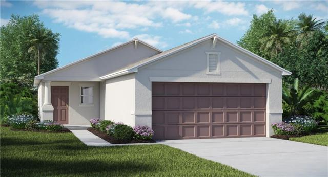10114 Golden Wonder Lane, Riverview, FL 33579 (MLS #T3178412) :: The Duncan Duo Team