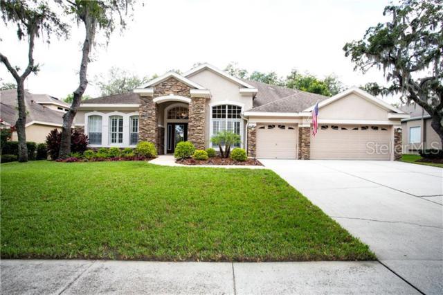 15916 Sorawater Drive, Lithia, FL 33547 (MLS #T3178450) :: Jeff Borham & Associates at Keller Williams Realty