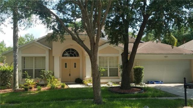 9227 Dayflower Drive, Tampa, FL 33647 (MLS #T3178453) :: Team Bohannon Keller Williams, Tampa Properties