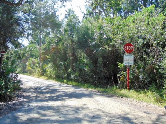Felker Drive, Weeki Wachee, FL 34607 (MLS #T3178522) :: The Duncan Duo Team
