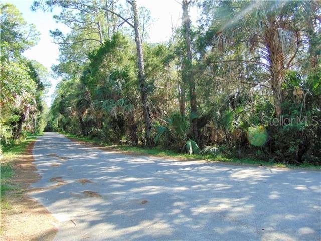 Felker Drive, Weeki Wachee, FL 34607 (MLS #T3178525) :: The Duncan Duo Team