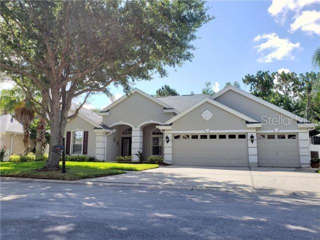 19225 Autumn Woods Avenue, Tampa, FL 33647 (MLS #T3178563) :: Team Bohannon Keller Williams, Tampa Properties