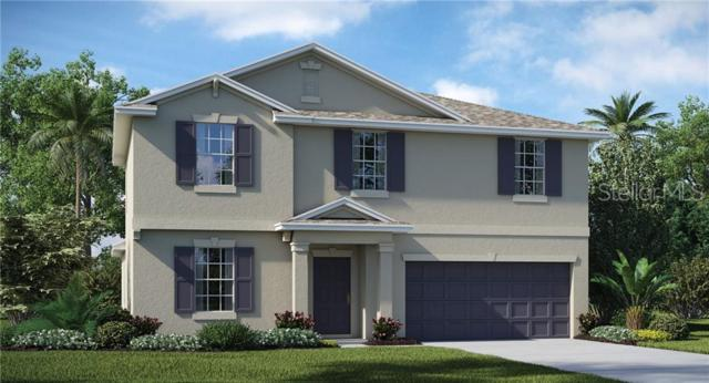 924 Zone Tailed Hawk Place, Ruskin, FL 33570 (MLS #T3178567) :: The Brenda Wade Team
