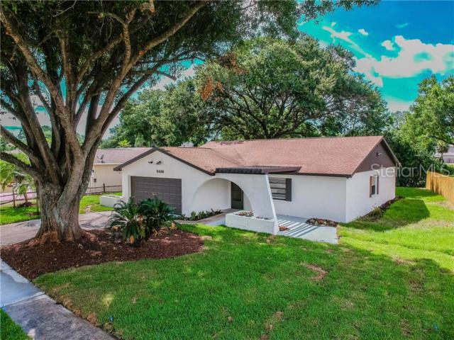 5440 Pentail Circle, Tampa, FL 33625 (MLS #T3178813) :: The Duncan Duo Team