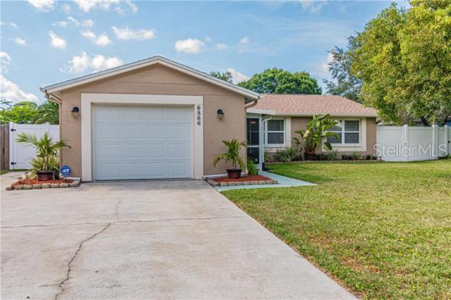 6866 122ND Avenue, Largo, FL 33773 (MLS #T3178883) :: Dalton Wade Real Estate Group