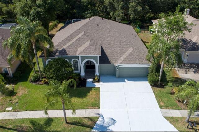 9114 Callaway Drive, Trinity, FL 34655 (MLS #T3178884) :: RE/MAX CHAMPIONS