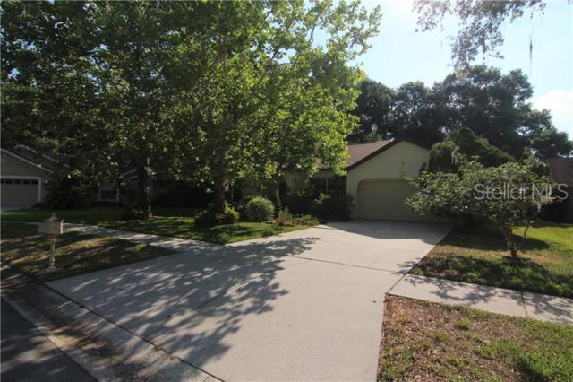 14905 Perriwinkle Place, Tampa, FL 33625 (MLS #T3178989) :: Team Bohannon Keller Williams, Tampa Properties