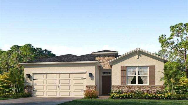 5927 Silver Palm Boulevard, Lakewood Ranch, FL 34211 (MLS #T3179013) :: The Duncan Duo Team