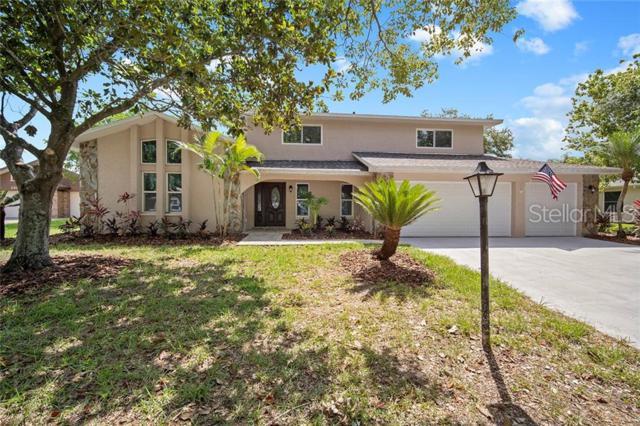 120 Foxfire Lane, Oldsmar, FL 34677 (MLS #T3179149) :: Cartwright Realty