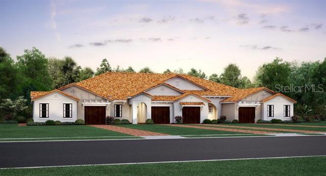 16865 Whisper Elm Street, Wimauma, FL 33598 (MLS #T3179195) :: Team Bohannon Keller Williams, Tampa Properties