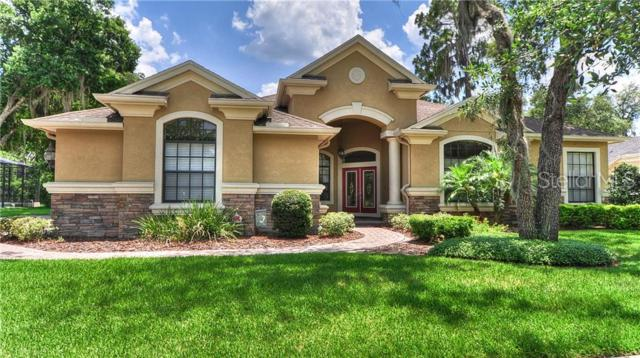16107 Ternglade Drive, Lithia, FL 33547 (MLS #T3179201) :: Bustamante Real Estate