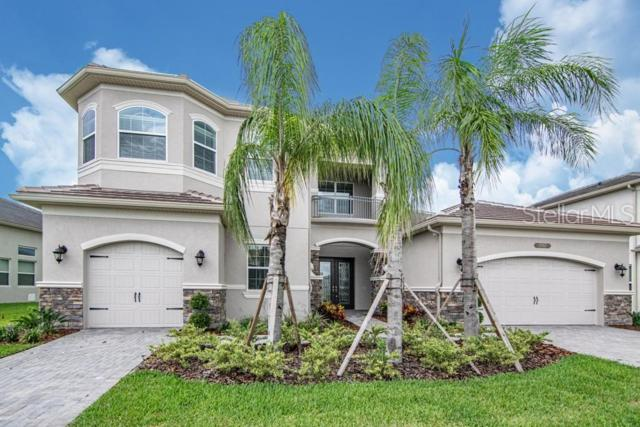 2767 Coco Palm Circle, Wesley Chapel, FL 33543 (MLS #T3179234) :: The Duncan Duo Team