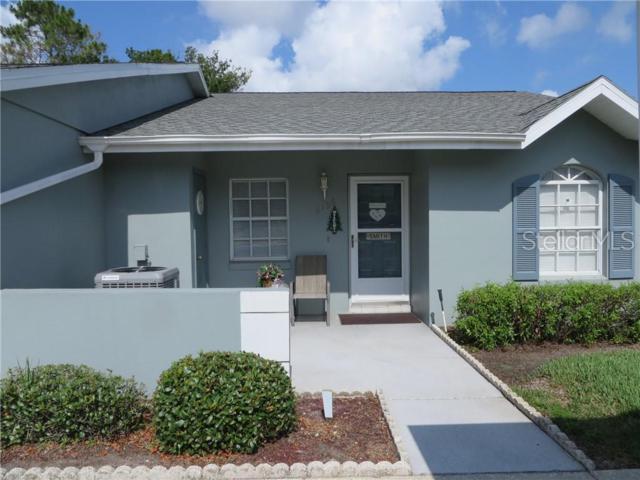 6796 Basswood Circle, Zephyrhills, FL 33542 (MLS #T3179327) :: Jeff Borham & Associates at Keller Williams Realty