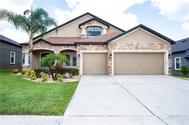 2833 Colewood Lane, Dover, FL 33527 (MLS #T3179428) :: The Duncan Duo Team