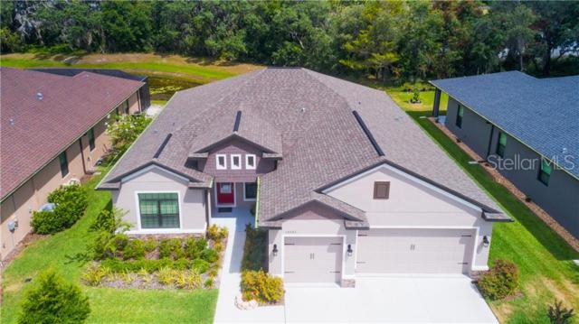 12545 Drakefield Drive, Spring Hill, FL 34610 (MLS #T3179473) :: Cartwright Realty