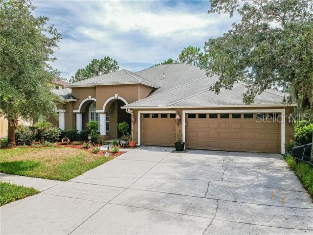 19201 Wind Dancer Street, Lutz, FL 33558 (MLS #T3179544) :: Andrew Cherry & Company