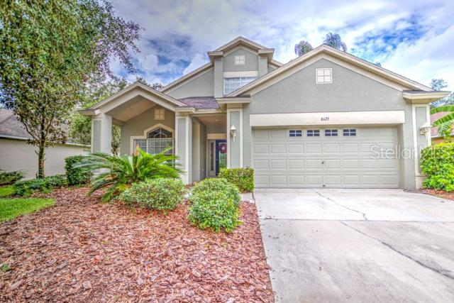 6125 Gannetdale Drive, Lithia, FL 33547 (MLS #T3179549) :: Bustamante Real Estate