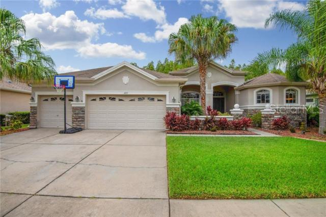 1455 Salmonberry Street, Wesley Chapel, FL 33543 (MLS #T3179653) :: The Duncan Duo Team