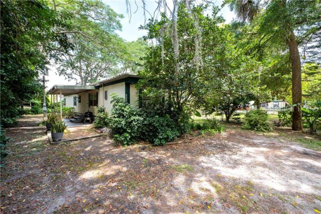 18316 Crooked Lane, Lutz, FL 33548 (MLS #T3179682) :: The Duncan Duo Team