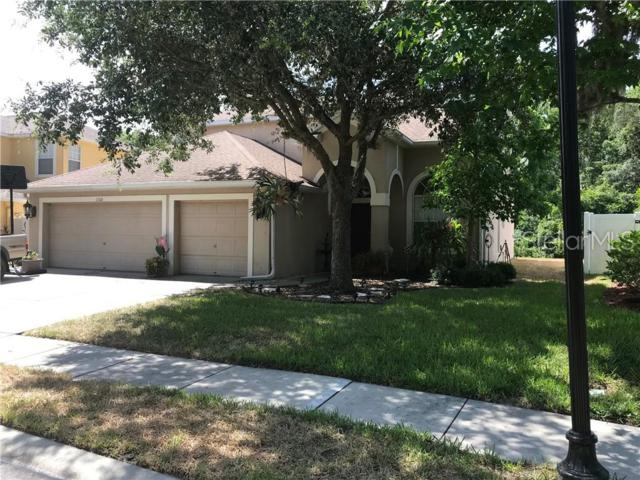 11106 Oyster Bay Circle, New Port Richey, FL 34654 (MLS #T3179751) :: The Duncan Duo Team