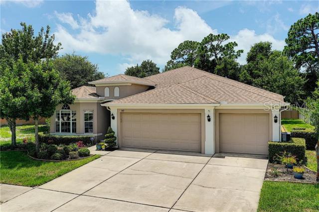 1411 Blue Marlin Boulevard, Holiday, FL 34691 (MLS #T3179765) :: Jeff Borham & Associates at Keller Williams Realty
