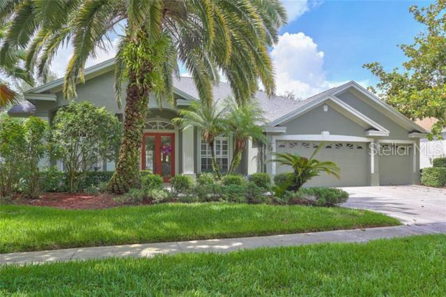 19115 Autumn Woods Avenue, Tampa, FL 33647 (MLS #T3179796) :: Cartwright Realty