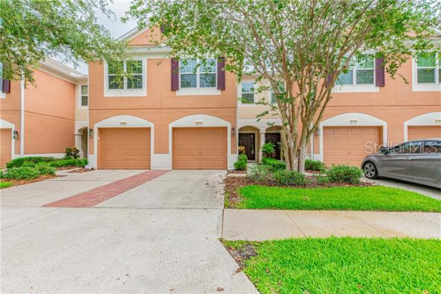 26647 Castleview Way, Wesley Chapel, FL 33544 (MLS #T3179810) :: The Duncan Duo Team