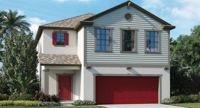 9052 Pleasant Woods Drive, Land O Lakes, FL 34637 (MLS #T3179904) :: The Duncan Duo Team