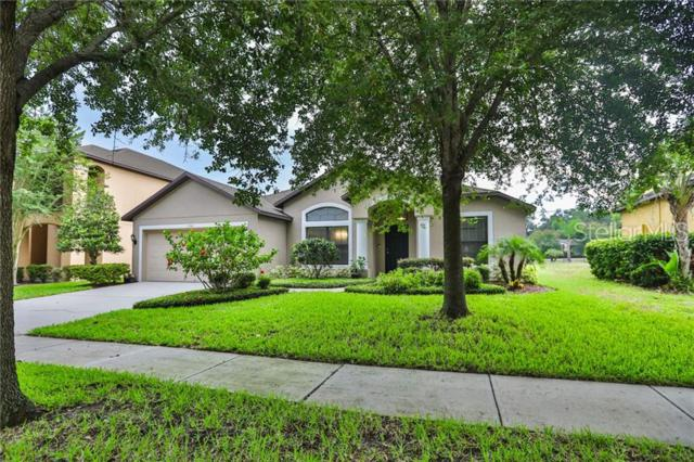 1949 Abbey Ridge Drive, Dover, FL 33527 (MLS #T3179914) :: The Duncan Duo Team