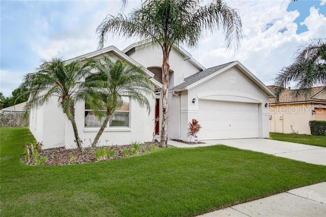 9962 Stockbridge Drive, Tampa, FL 33626 (MLS #T3179921) :: Paolini Properties Group