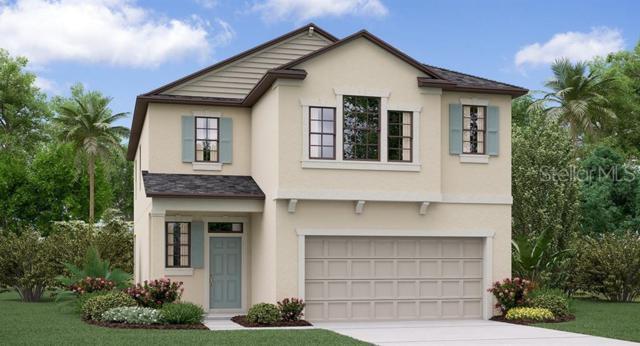 9037 Shadyside Lane, Land O Lakes, FL 34637 (MLS #T3179926) :: Team 54