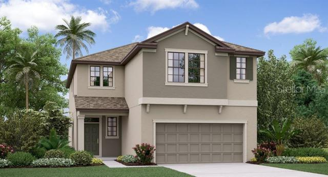 9031 Shadyside Lane, Land O Lakes, FL 34637 (MLS #T3179939) :: The Duncan Duo Team