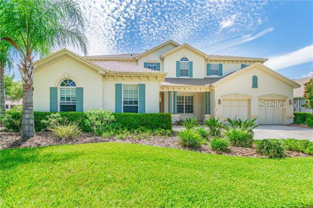 14802 Tudor Chase Drive, Tampa, FL 33626 (MLS #T3180018) :: Griffin Group