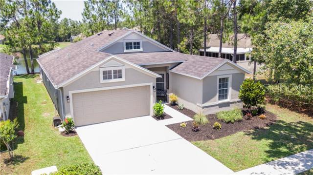 21917 Waverly Shores Lane, Land O Lakes, FL 34637 (MLS #T3180022) :: The Duncan Duo Team