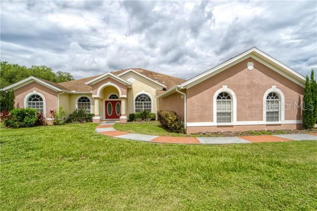 3702 Ralston Rd, Plant City, FL 33566 (MLS #T3180040) :: The Duncan Duo Team