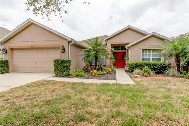 6705 Cromwell Garden Drive, Apollo Beach, FL 33572 (MLS #T3180045) :: Team Bohannon Keller Williams, Tampa Properties