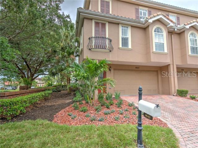 4643 Overlook Drive NE, St Petersburg, FL 33703 (MLS #T3180181) :: The Duncan Duo Team
