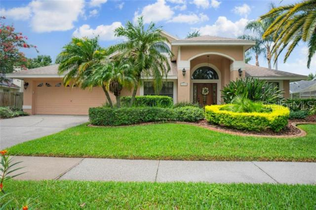 9249 Dayflower Drive, Tampa, FL 33647 (MLS #T3180315) :: Team Bohannon Keller Williams, Tampa Properties