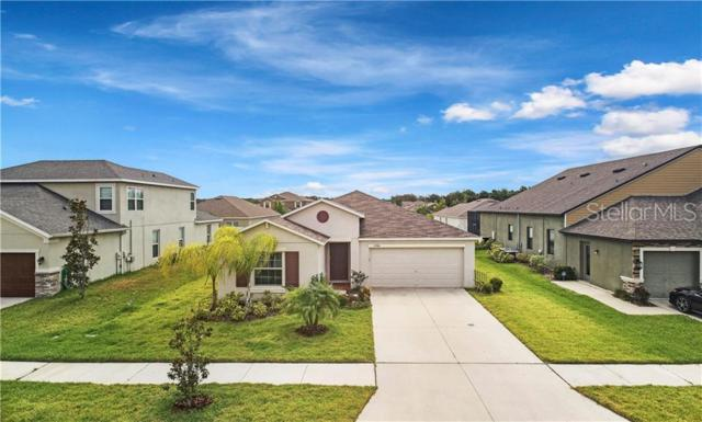 12704 Flatwood Creek Drive, Gibsonton, FL 33534 (MLS #T3180318) :: The Price Group