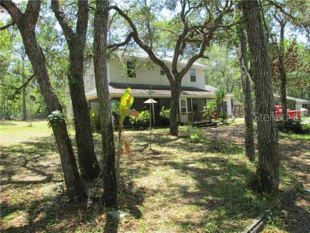 7117 Norway Street, Webster, FL 33597 (MLS #T3180327) :: Cartwright Realty
