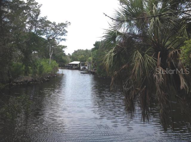 Grybek Drive, Homosassa, FL 34448 (MLS #T3180330) :: The Duncan Duo Team