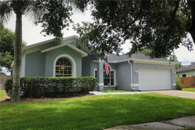 19621 Wyndmill Circle, Odessa, FL 33556 (MLS #T3180377) :: Paolini Properties Group