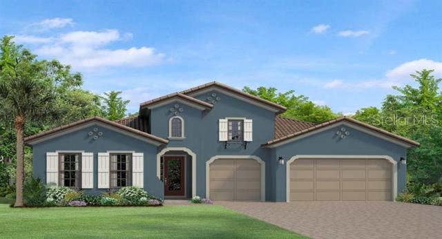 3624 Madison Cypress Drive, Lutz, FL 33558 (MLS #T3180386) :: The Duncan Duo Team
