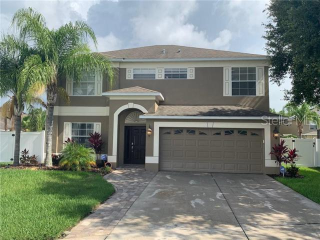 Address Not Published, Land O Lakes, FL 34638 (MLS #T3180397) :: Cartwright Realty