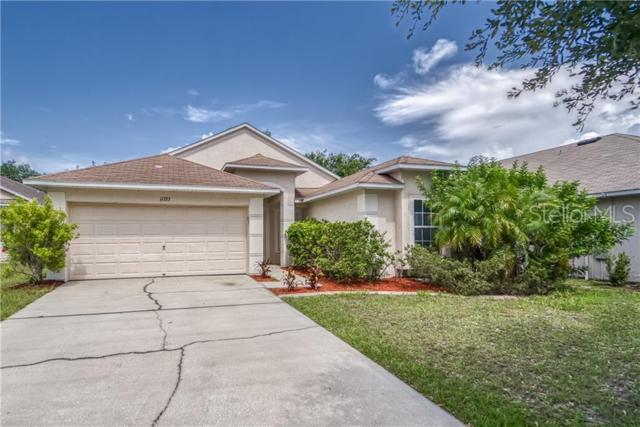 11723 Pure Pebble Drive, Riverview, FL 33569 (MLS #T3180398) :: The Duncan Duo Team