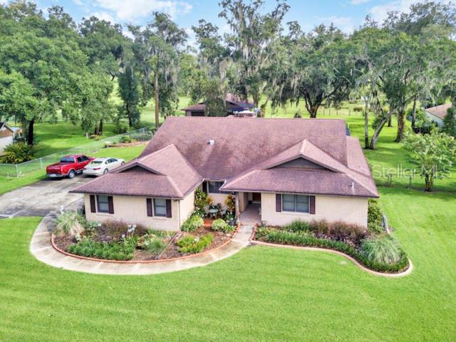 6505 Cathedral Oaks Dr, Plant City, FL 33565 (MLS #T3180492) :: The Duncan Duo Team