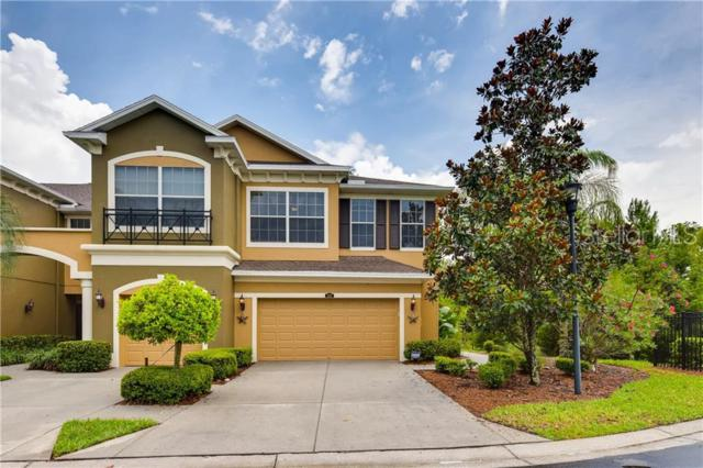 12507 Silverdale Street, Tampa, FL 33626 (MLS #T3180514) :: Paolini Properties Group