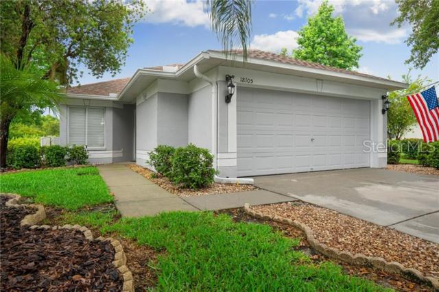 18105 Portside Street, Tampa, FL 33647 (MLS #T3180534) :: Cartwright Realty